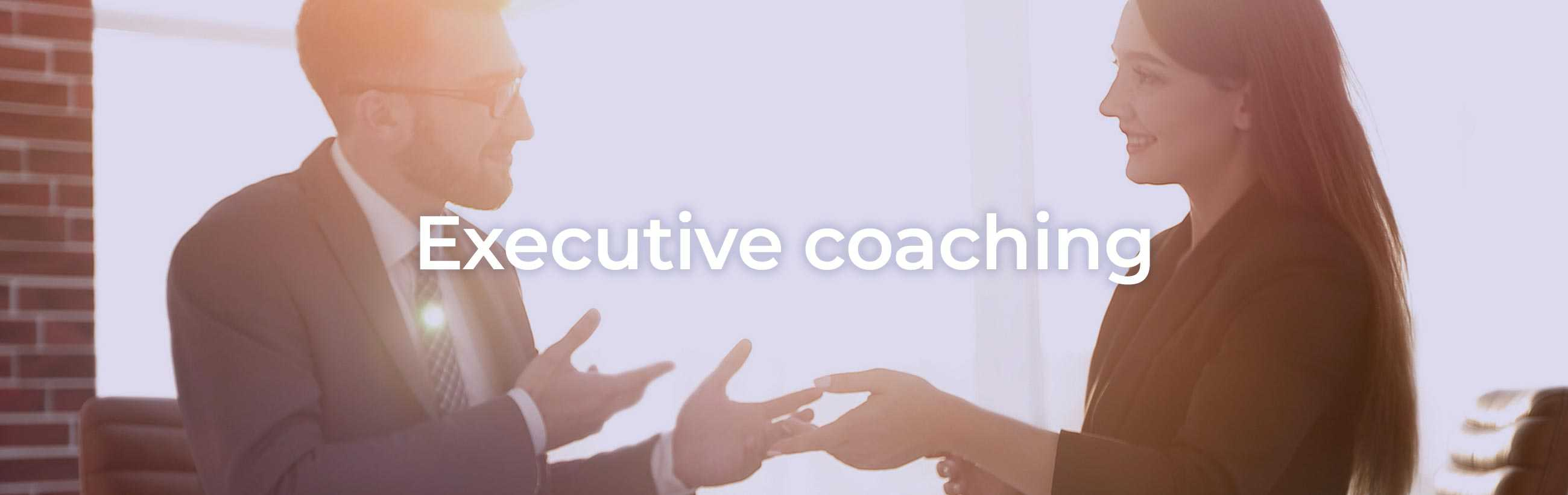 Executive coaching - Blueberry Hill